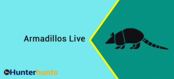 Where Do Armadillos Live