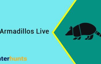 Where Do Armadillos Live