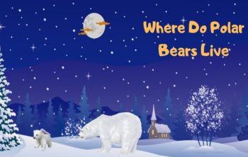 Where-Do-Polar-Bears-Live