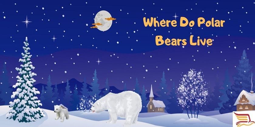 Where-Do-Polar-Bears-Live