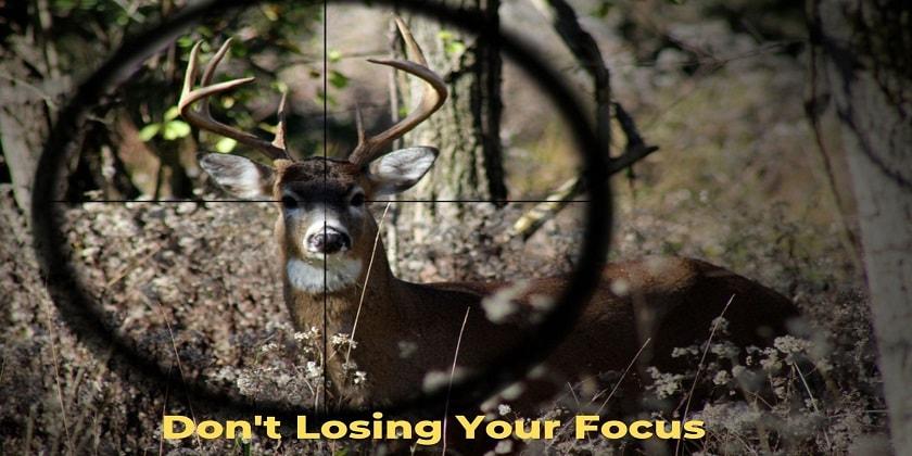Losing-Focus