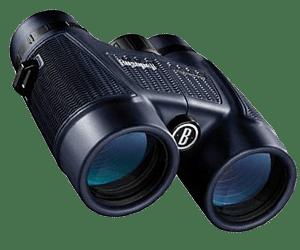 Bushnell H2O Hunting Binocular