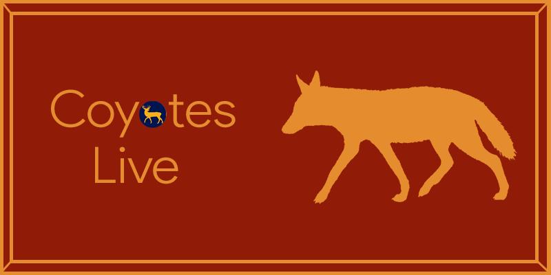 Where Do Coyotes Live