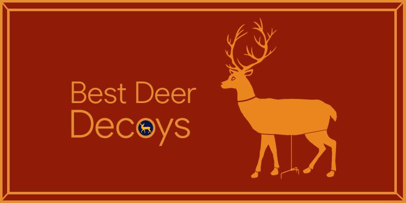 Best Deer Decoys