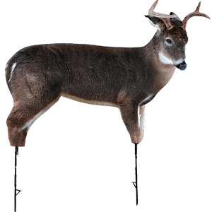 Freshman Whitetail Buck Decoy