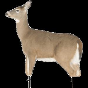 MONTANA Whitetail Deer Decoy