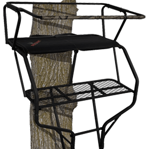 BIG GAME Two-Person Ladder Treestand
