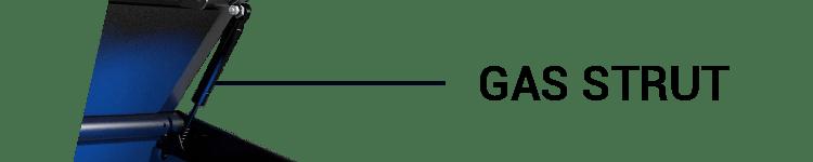 SentrySafeBiometric Gun Safe With 1 Gas Strut